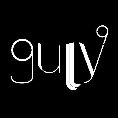 GULLY 9